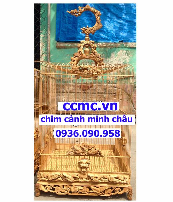 Chim hạt quý tộc KTTH-10100